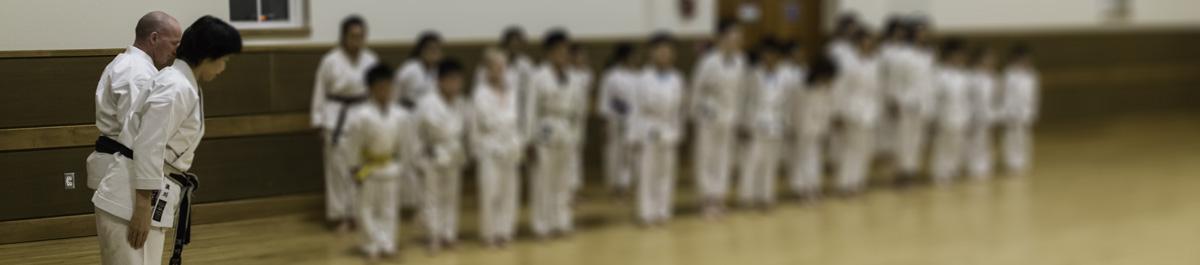 Migenkan_DSD1272-2-linear-blur